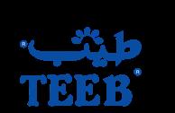 Teeb-Airfreshners-logo