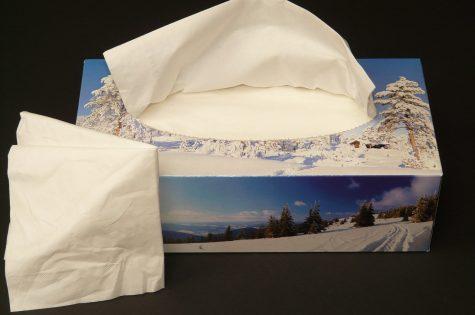 kleenex, tissue, paper towels